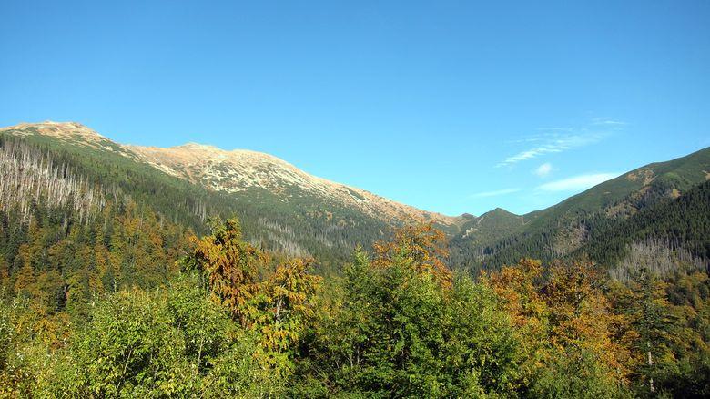 Dumbier: der höchste Berg der Niederen Tatra